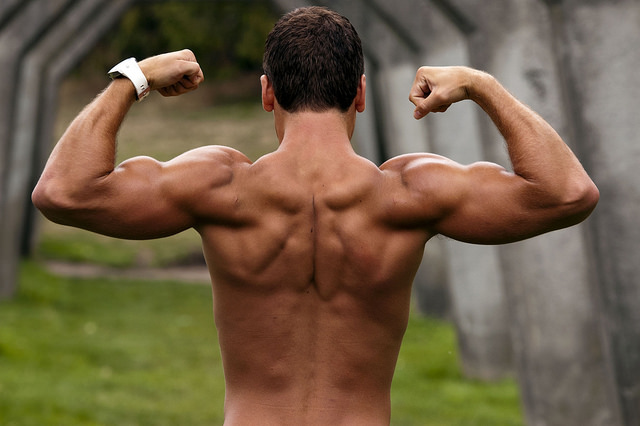 male flexing back